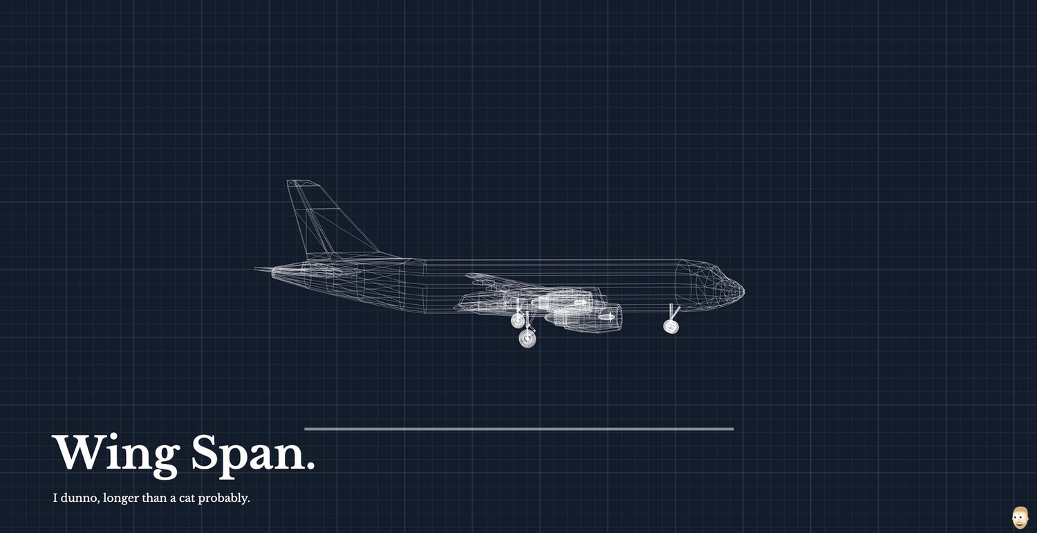 "A plane blueprint with a heading: ""Wing Span."", followed by ""I dunno, longer than a cat probably."""